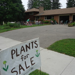 road plant sale  signs